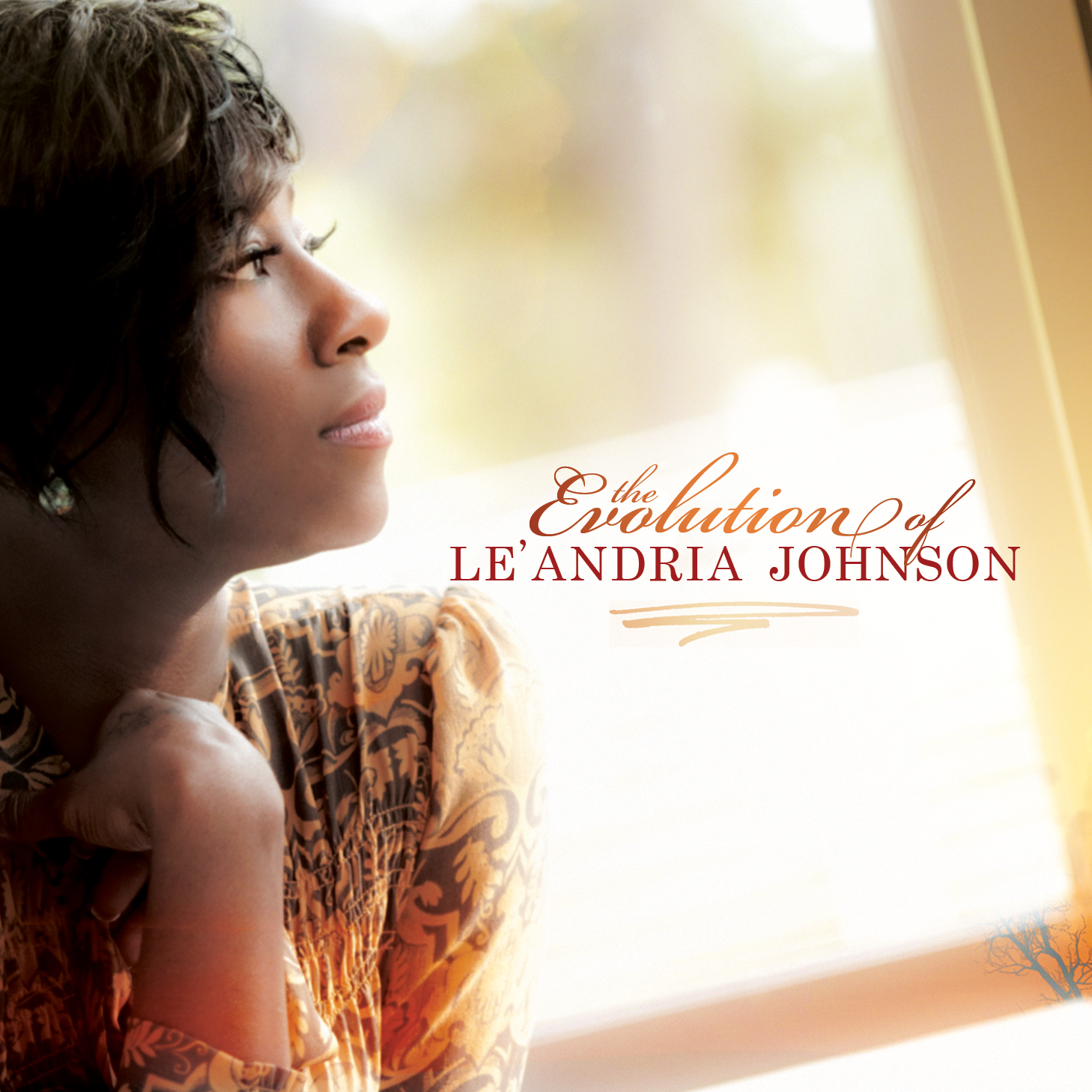 LeAndrea Johnson Let It Go