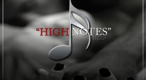 "New Artist Spotlight: Tiggy ""High Notes"""