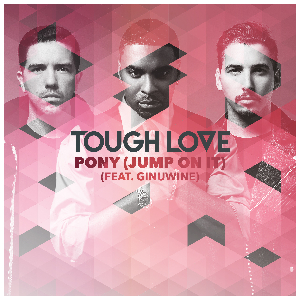 Tough Love Ginuwine Pony