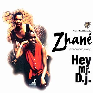 Zhane Hey Mr DJ Single Cover