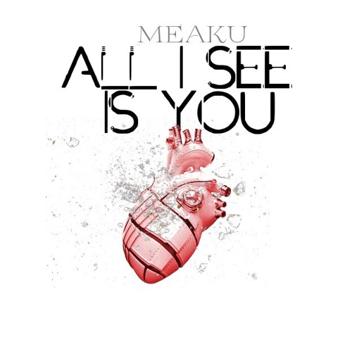 Meaku All I See is You
