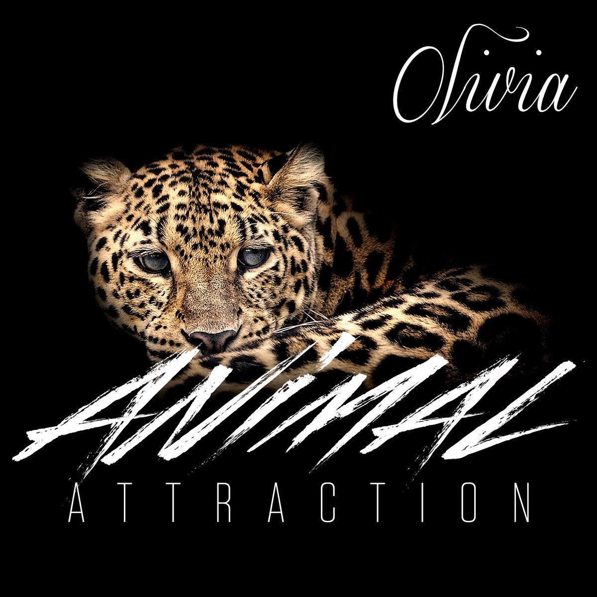 Olivia Animal Attraction