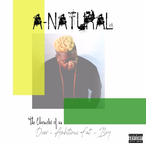 A-Natural The Chronicles of an Over Ambitious Fat Boy