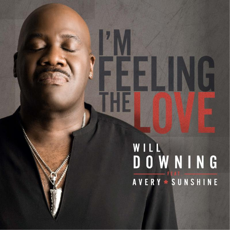 Will Downing Im Feeling the Love