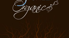 New Music: Stokley (of Mint Condition) – Organic