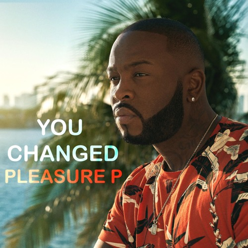 Pleasure P You Changed