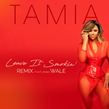 Tamia Leave It Smokin Remix