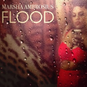 Marsha Ambrosius Flood