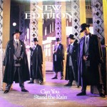 """Classic Vibe: New Edition """"Can You Stand the Rain"""" (1989)"""