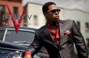bobby v fly on the wall