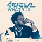 """Dwele """"What Profit"""" (Video Trailer)"""