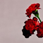 """Album Review: John Legend """"Love in the Future"""" (3.5 out of 5 Stars)"""