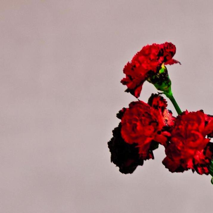 John Legend Love in the Future