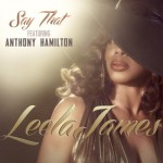 """Leela James """"Say That"""" featuring Anthony Hamilton (Video)"""