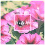 Lyric Video: K. Avett - In My Life