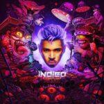 "Chris Brown Releases New Album ""Indigo"" (Stream)"