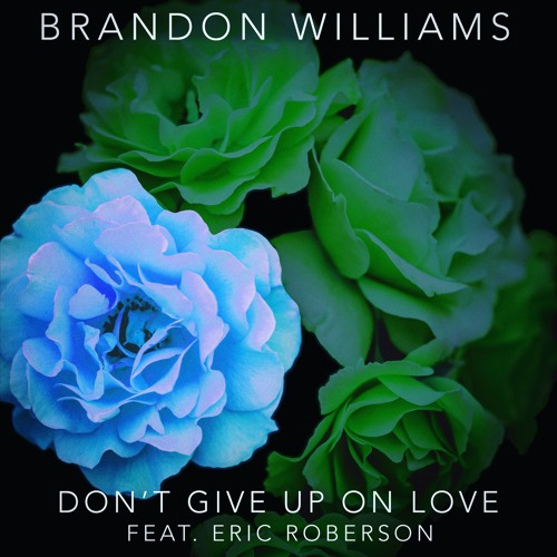 Brandon Williams Dont Give Up On Love Eric Roberson